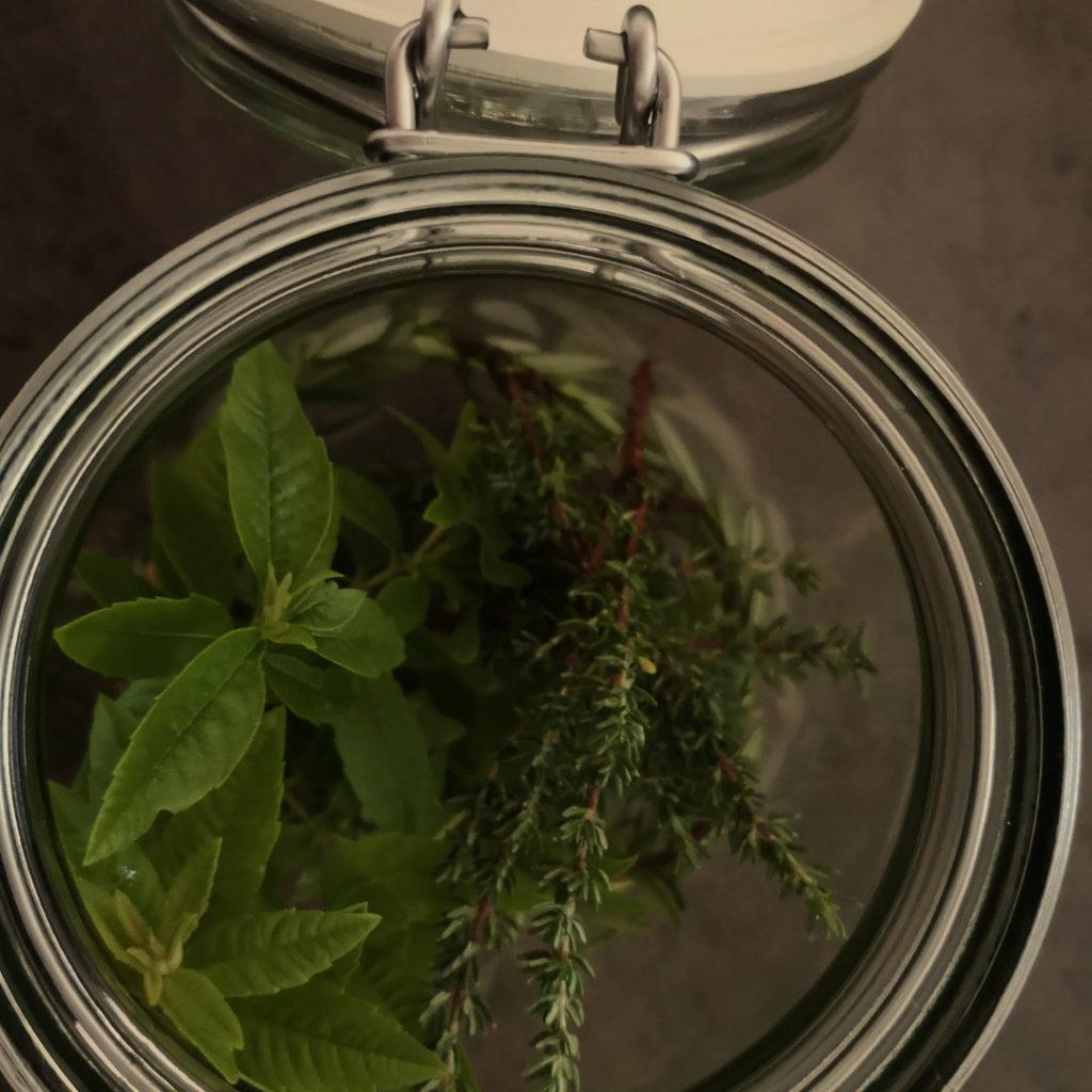 Kräuter Glas